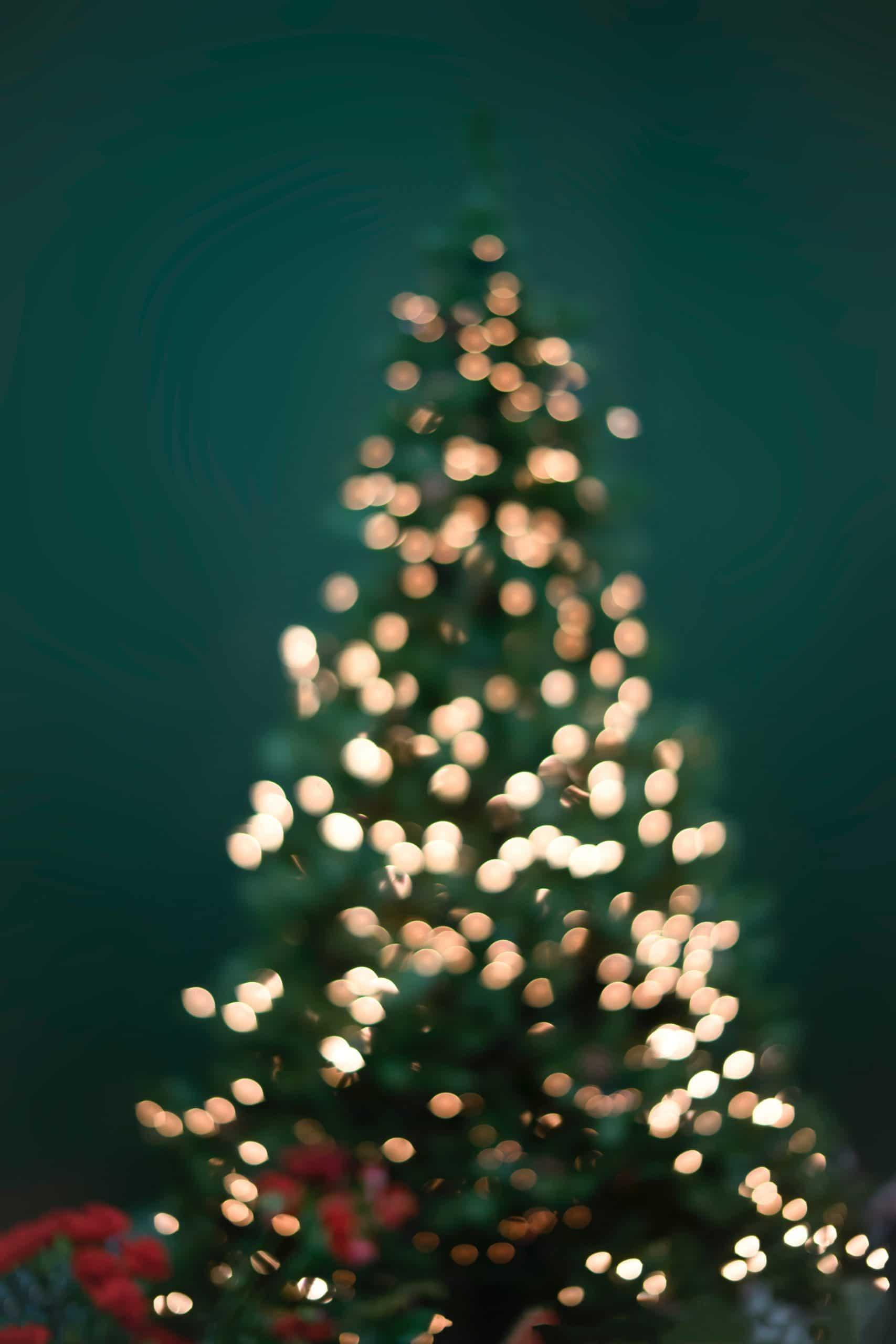 Pasquino Scheurkalender 15 december