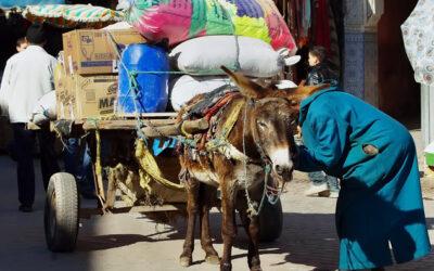 Een strafpleging in Marokko