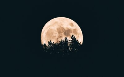 Donkere nacht